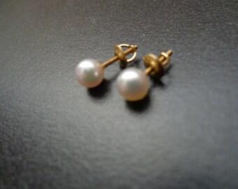 Pearl earrings / 14k gold.