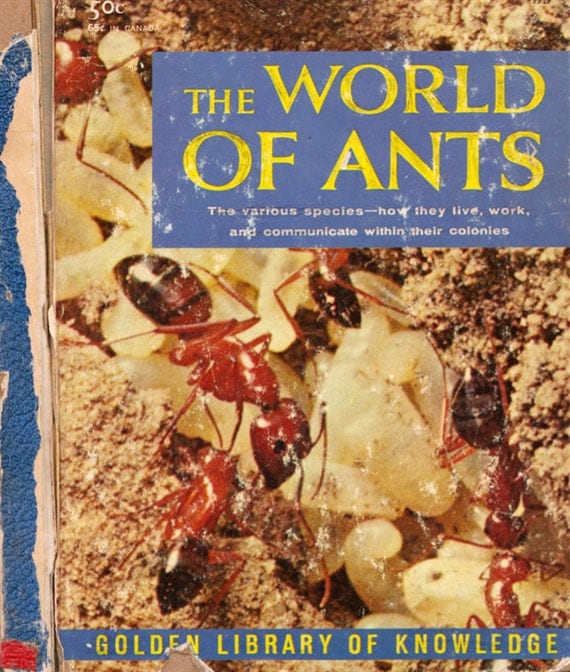 The World of Ants by G. Collins Wheat, illustrated by Eric Mose