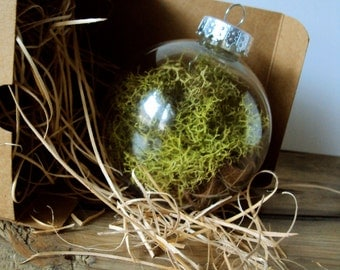 Woodland Moss Ornament - Rustic Christmas Bauble - Hanging Moss Ball Terrarium - Fairy Orb - Moss Green Nature Decor - Christmas Decorations