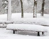 Canadian Winter Scene PRINT Fine Art Photograph Snowy day in the Park Snow on the Bench Magical Forest Home winter decor White trees for Dad