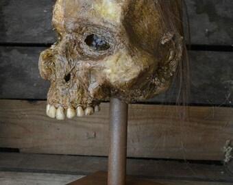 Corpse Head Zombie