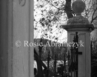 Gate of Lafayette Square Park, St. Louis, Digital Photo Print (by Rosie Abramczyk)