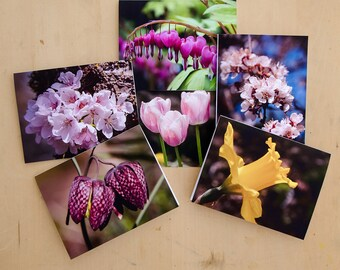 Flower photo notecards, thank you cards - blank greeting card set of 6