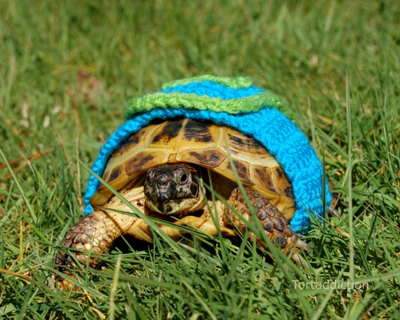 Tortoise or Turtle yard finder, M, Super-Tort crocheted turquoise and green cape, 5.5-6.5 inch shell length