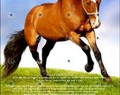 A Horsewomans Prayer
