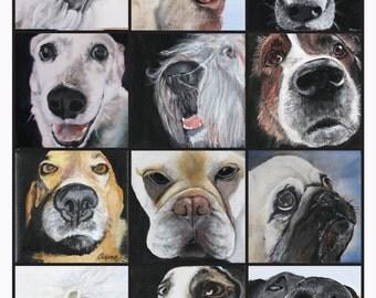Dog Nose Poster