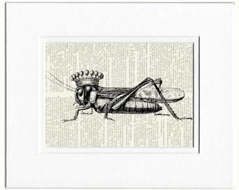 cricket prince print