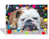 Bulldog birthday card  English bulldog card  Border of colorful polka dots  Relaxing birthday  Exercise