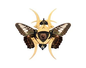 NIRA / Gold Butterfly Shuriken Brooch