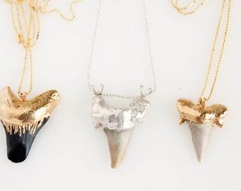 Shark's Tooth Fossil Talisman Pendant