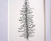 "Evergreen Pine Tree Art, Spruce Tree, Forest, Woodland, Nature, Gift Idea, Black, Ink Pen,Illustration, Drawing, 5"" x 7"", Decor, Wall Art"