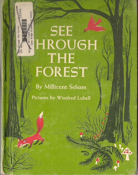 VINTAGE KIDS BOOK See Through the Forest