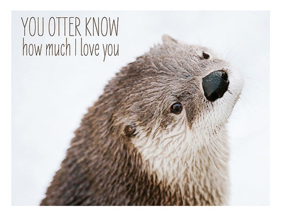 Valentine Card You Otter Know Nature Photography – Animal Valentine Cards