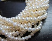 PEARL 4.5mm x 3.5mm  Seed White Freshwater Bead Strand 15 inches
