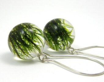 Moss Earrings, Resin Earrings, Sterlin Silver Moss, Resin Ball Earrings, Woodland Earrings, Botanical, Forest Jewelry