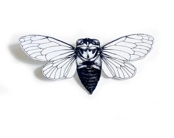 Cicada insect brooch, cicada pin