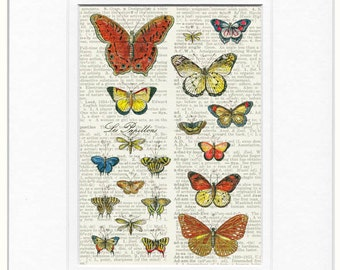 butterflies III dictionary page print