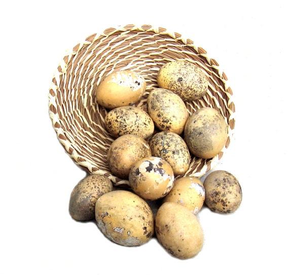 Egg Gourds Baker's Dozen Organically Grown Primitive Bowl Filler Crafts