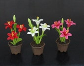 3 Pots - Dollhouse Miniature Handmade Clay Red White Pink Lilium Lily Flower Flora