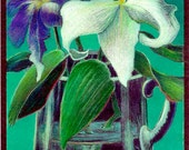 RESERVED FOR LAUREL, Winter Lilies, Original Handcolored Color Pencil, Floral Still Life
