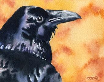 RAVEN Wildlife Bird Art Print Signed by Watercolor Artist DJ Rogers