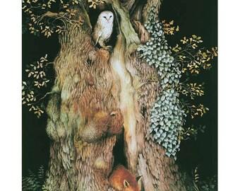 Barn owl and fox in old oak tree print.
