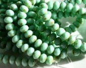 Mint Green Picasso 8x6mm Faceted Rondelle Beads   25