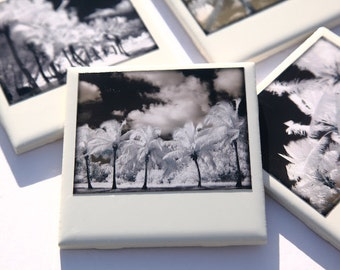Palm Tree Coasters, Set of 4, Tropical Home Decor Infrared Palm Trees,  Key West, Black and White Original Photography