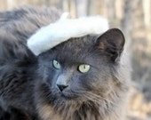 Cat Beret - Cozy Winter - Wool Felted Beret - Clothes for Cats