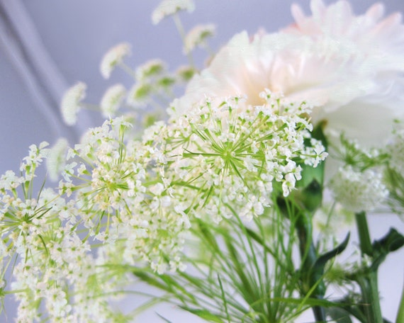 Soft White Digital Photograph