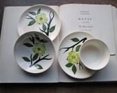 Vintage Dishes Dixie Dogwood / single serve set