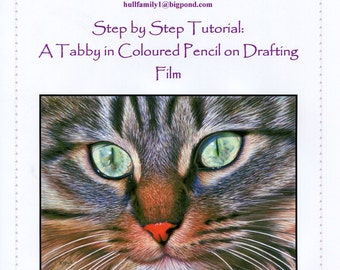 Step by Step Art Tutorial - Drawing a Tabby using Coloured Pencils on Drafting Film