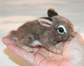 OOAK Needle felted Spring 2 week old Baby Cottontail  Bunny Rabbit with green nest