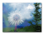 Mystical Dandelion Photograph 8x10 fine art photographic collage modern landscape nature sky clouds trees surreal contemporary wall decor