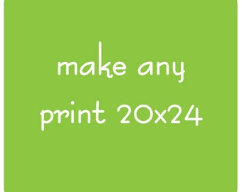 Make Any Print 20x24
