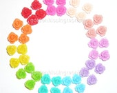 Bright Color Rose Cabochon Variety Pack of Forty, ten unique colours, 9mm x 6mm