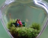 terrarium let's grow old together