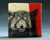 Hand Painted Red Panda Portrait Wall Tile Coral Red