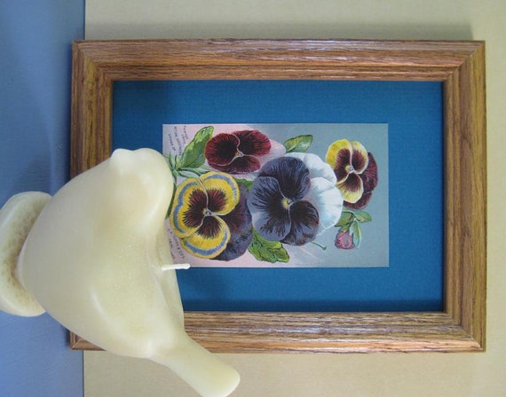 Vintage Garden Decor Rustic Garden Pansies Print Seed Catalog DM Ferry Framed Botanical