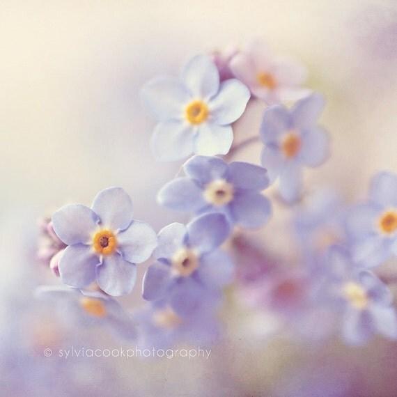 Image result for spring flower art photography
