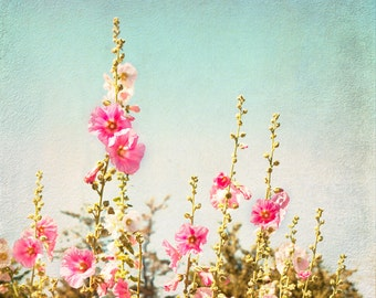 Flower Photography -  Pink Hollyhocks in Summer, Floral Photograph, Romantic Wall Decor