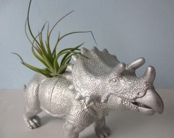 Upcycled Dinosaur Planter - Extra Large Silver Triceratops with Tillandsia Air Plant