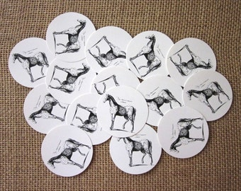 Spotted Horse Tags Round Paper Gift Tags Set of 10