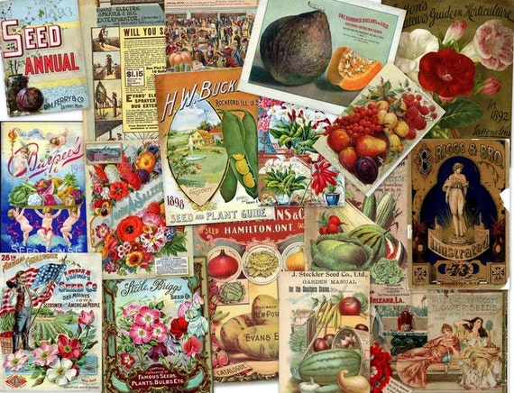 Garden and Seed Books scrapnow etsy shop $7.99