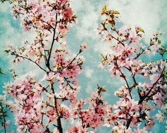 Vintage Spring  8x10 ColorOrginal  Art  Photograph by StaticMovement