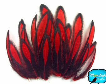 Laced Feathers, 1 Dozen - RED Laced Hen Cape Feather : 2215