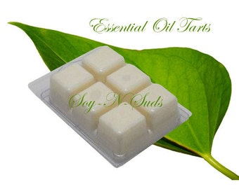 SPEARMINT ESSENTIAL OIL // Wax Tarts // Soy Tarts // Candle Tarts // Melting Tarts // Scented Tarts