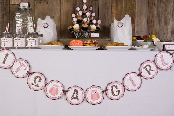 pink owl baby shower decorations owl themed its a girl baby shower