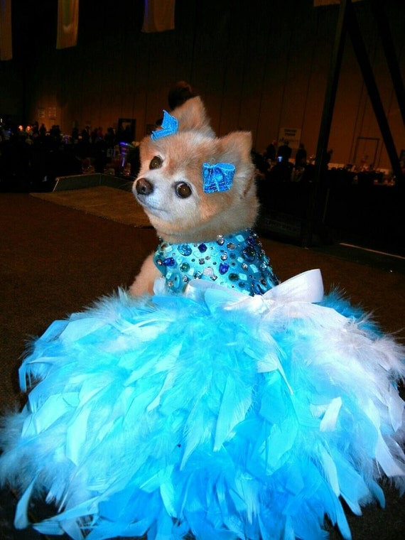 Dog Dress Wedding Turquoise Bling Satin Feather by KOCouture