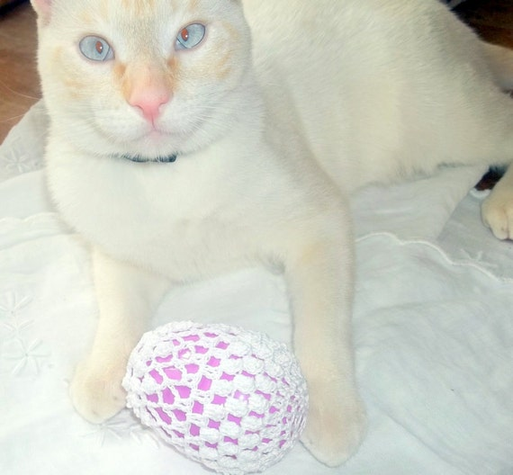Crochet Lace Covered Plastic Easter Egg Set of 2 - Donation to Whatcom Humane Society